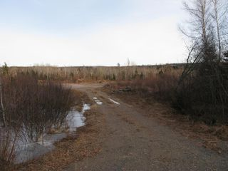 Photo 4: West River East Side Road in Durham: 108-Rural Pictou County Vacant Land for sale (Northern Region)  : MLS®# 201902921