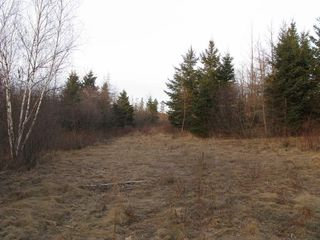 Photo 7: West River East Side Road in Durham: 108-Rural Pictou County Vacant Land for sale (Northern Region)  : MLS®# 201902921