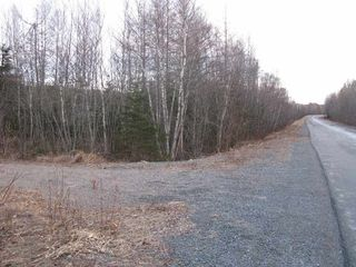 Photo 5: West River East Side Road in Durham: 108-Rural Pictou County Vacant Land for sale (Northern Region)  : MLS®# 201902921