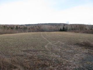 Photo 2: West River East Side Road in Durham: 108-Rural Pictou County Vacant Land for sale (Northern Region)  : MLS®# 201902921