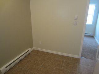 Photo 7:  in Winnipeg: Duplex for sale
