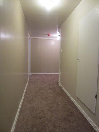 Photo 13:  in Winnipeg: Duplex for sale