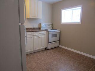 Photo 24:  in Winnipeg: Duplex for sale