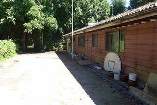 Photo 8: 16567 78 Avenue in Surrey: Fleetwood Tynehead House for sale : MLS®# R2289292