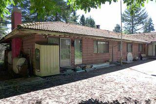 Photo 5: 16567 78 Avenue in Surrey: Fleetwood Tynehead House for sale : MLS®# R2289292