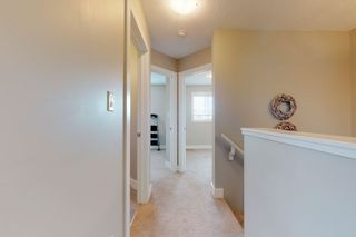 Photo 14: 2125 24 Street in Edmonton: Zone 30 Attached Home for sale : MLS®# E4163294