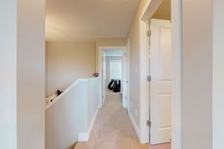 Photo 13: 2125 24 Street in Edmonton: Zone 30 Attached Home for sale : MLS®# E4163294