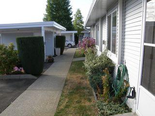 Photo 2: 4 23580 Dewdney Trunk Road in St George's Village: Home for sale : MLS®# V975203