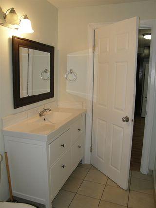 Photo 7: 553 DOUGLAS Street in Hope: Hope Center House for sale : MLS®# R2434928