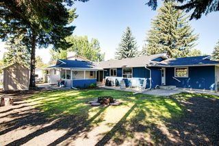 Photo 46: 439 WILDERNESS Drive SE in Calgary: Willow Park Detached for sale : MLS®# A1026738