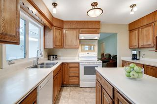 Photo 34: 439 WILDERNESS Drive SE in Calgary: Willow Park Detached for sale : MLS®# A1026738