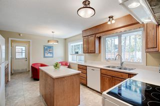 Photo 32: 439 WILDERNESS Drive SE in Calgary: Willow Park Detached for sale : MLS®# A1026738