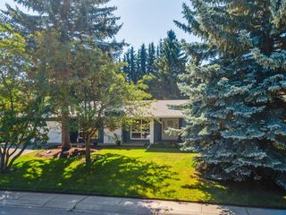 Photo 50: 439 WILDERNESS Drive SE in Calgary: Willow Park Detached for sale : MLS®# A1026738