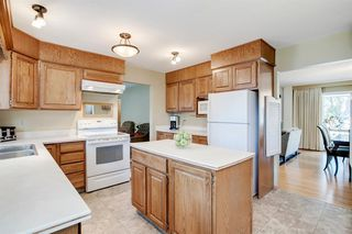 Photo 33: 439 WILDERNESS Drive SE in Calgary: Willow Park Detached for sale : MLS®# A1026738