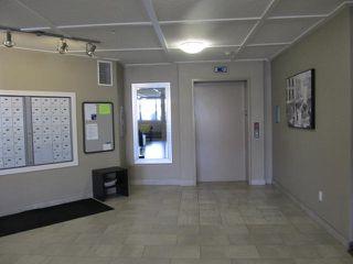 Photo 2: 207 279 WYE Road: Sherwood Park Condo for sale : MLS®# E4215990