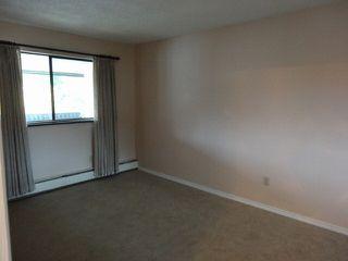 "Photo 12: 311 1561 VIDAL Street: White Rock Condo for sale in ""RIDGECREST"" (South Surrey White Rock)  : MLS®# F1425494"