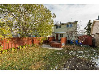 Photo 17: 60 ERIN MOUNT Crescent SE in Calgary: Erinwoods Residential Detached Single Family for sale : MLS®# C3642825