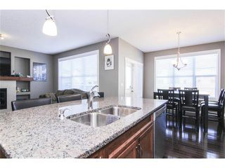 Photo 19: 659 COPPERPOND Circle SE in Calgary: Copperfield House for sale : MLS®# C4001282