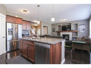 Photo 18: 659 COPPERPOND Circle SE in Calgary: Copperfield House for sale : MLS®# C4001282