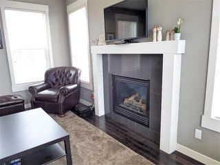 Photo 18: 494 Rainbow Falls Drive: Chestermere House for sale : MLS®# C4012295