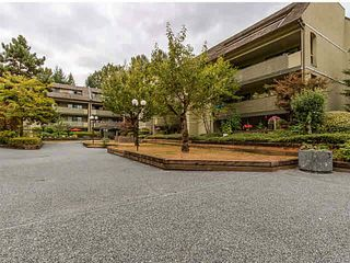 """Photo 14: 106 1200 PACIFIC Street in Coquitlam: North Coquitlam Condo for sale in """"GLENVIEW MANOR"""" : MLS®# V1139335"""