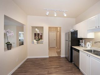 """Photo 11: 303 5677 208 Street in Langley: Langley City Condo for sale in """"IVY LEA"""" : MLS®# R2000017"""