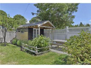 Photo 12: 1416 Denman St in VICTORIA: Vi Fernwood Single Family Detached for sale (Victoria)  : MLS®# 736823