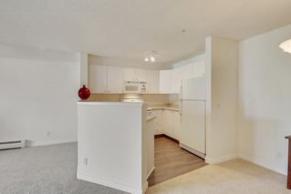 Photo 9: 215 2000 Citadel Meadows Point NW in Calgary: Condo for sale : MLS®# C4024513