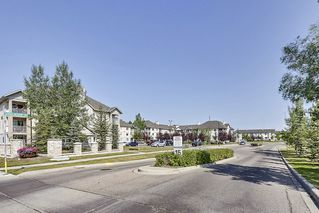 Photo 23: 215 2000 Citadel Meadows Point NW in Calgary: Condo for sale : MLS®# C4024513
