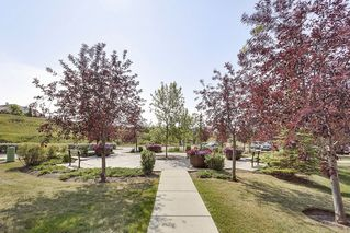 Photo 22: 215 2000 Citadel Meadows Point NW in Calgary: Condo for sale : MLS®# C4024513