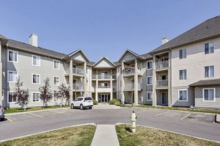 Photo 21: 215 2000 Citadel Meadows Point NW in Calgary: Condo for sale : MLS®# C4024513