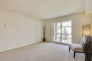 Photo 15: 215 2000 Citadel Meadows Point NW in Calgary: Condo for sale : MLS®# C4024513
