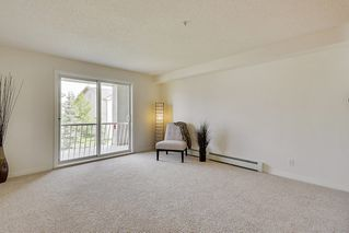 Photo 12: 215 2000 Citadel Meadows Point NW in Calgary: Condo for sale : MLS®# C4024513