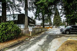 "Photo 14: 42 21555 DEWDNEY TRUNK Road in Maple Ridge: West Central Townhouse for sale in ""RICHMOND COURT"" : MLS®# R2131390"