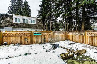 "Photo 13: 42 21555 DEWDNEY TRUNK Road in Maple Ridge: West Central Townhouse for sale in ""RICHMOND COURT"" : MLS®# R2131390"
