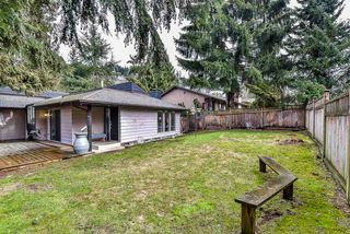 Photo 17: 2476 WOODSTOCK Drive in Abbotsford: Abbotsford East House for sale : MLS®# R2143858