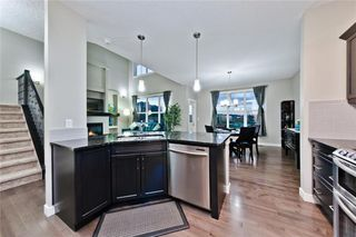 Photo 16: 714 COPPERPOND CI SE in Calgary: Copperfield House for sale : MLS®# C4121728