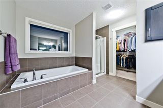Photo 26: 714 COPPERPOND CI SE in Calgary: Copperfield House for sale : MLS®# C4121728