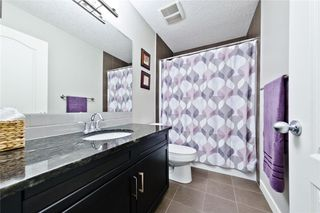 Photo 36: 714 COPPERPOND CI SE in Calgary: Copperfield House for sale : MLS®# C4121728