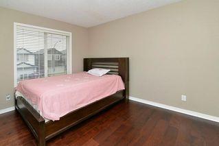 Photo 17: 151 SADDLECREST Gardens NE in Calgary: Saddle Ridge House for sale : MLS®# C4138096