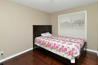 Photo 16: 151 SADDLECREST Gardens NE in Calgary: Saddle Ridge House for sale : MLS®# C4138096