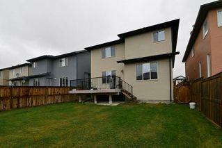 Photo 30: 151 SADDLECREST Gardens NE in Calgary: Saddle Ridge House for sale : MLS®# C4138096