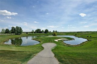 Photo 39: 41 Summit Pointe Drive: Heritage Pointe House for sale : MLS®# C4163046
