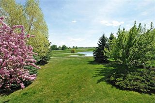 Photo 35: 41 Summit Pointe Drive: Heritage Pointe House for sale : MLS®# C4163046