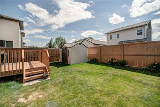Photo 20: 1021 BRIGHTONCREST Common SE in Calgary: New Brighton Detached for sale : MLS®# C4197149
