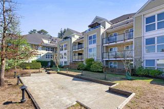 "Photo 11: 102 1519 GRANT Avenue in Port Coquitlam: Glenwood PQ Condo for sale in ""The Beacon"" : MLS®# R2302022"