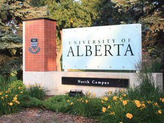 Photo 24: 103 10719 80 Avenue in Edmonton: Zone 15 Condo for sale : MLS®# E4140675