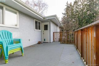 Photo 18: 420 Richmond Avenue in VICTORIA: Vi Fairfield East Single Family Detached for sale (Victoria)  : MLS®# 406071
