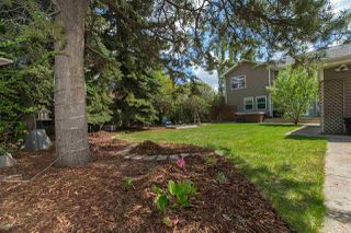 Photo 27: 14008 85 Avenue in Edmonton: Zone 10 House for sale : MLS®# E4150416