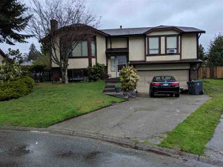 Main Photo: 14865 95A Avenue in Surrey: Fleetwood Tynehead House for sale : MLS®# R2358382